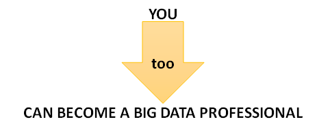 CAN BECOME A BIG DATA PROFESSIONAL